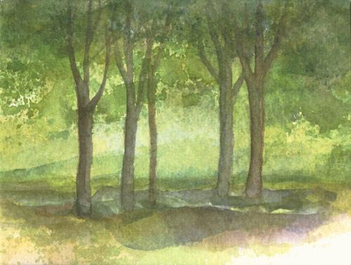 Klemz: woodland {forêt}