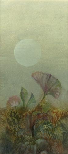 Klemz: Flor de Luna