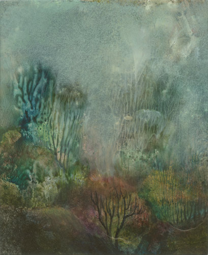 Klemz: bosque nublado